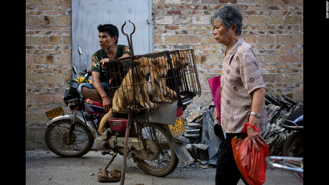 "A woman walks past a vendor during <a href=""http://www.cnn.com/videos/world/2016/06/20/dog-meat-festival-china-orig.cnn"" target=""_blank"">a dog meat festival</a> in Yulin, China, on Tuesday, June 21. Animal rights activists are working to end what they call a cruel and unsanitary ritual. <a href=""http://www.cnn.com/2015/06/18/opinions/china-yulin-dog-festival-peter-li/"" target=""_blank"">Related: Dog meat trade divides China</a>"