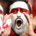 22 Euro 2016 Fan Face