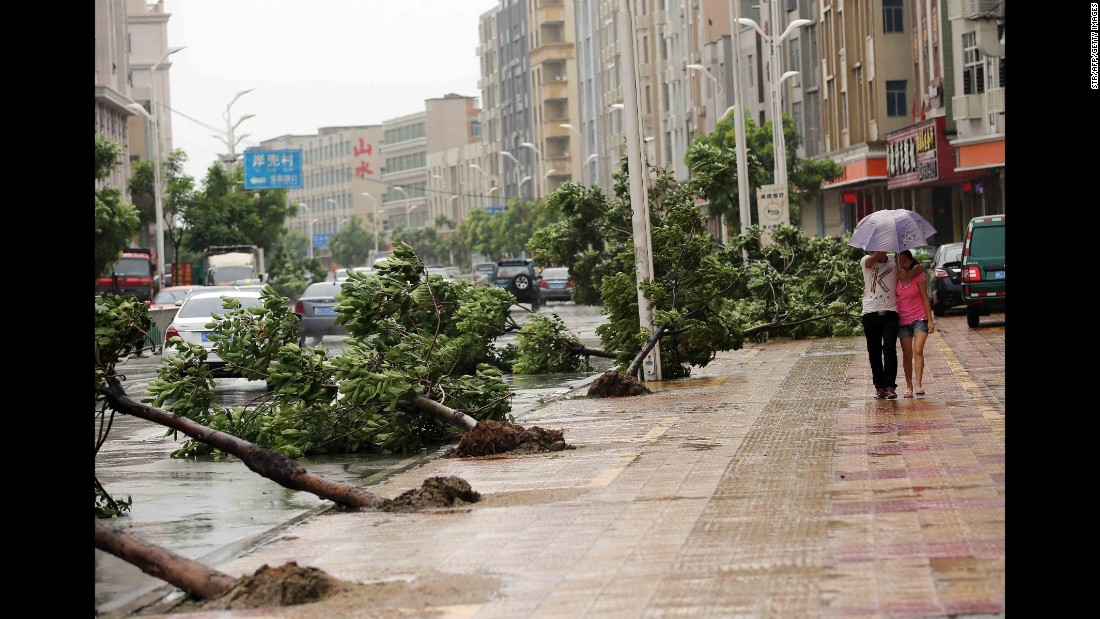 Trees torn down by strong wind collapse on the road in Jinjiang, east China's Fujian province on August 8, 2015 as typhoon Soudelor draws near the mainland of China. Typhoon Soudelor battered Taiwan with fierce winds and rain, leaving four people dead and a trail of debris in its wake as it takes aim at mainland China.