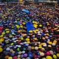 hong kong umbrella movement occupy