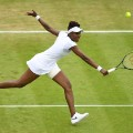 Wimbledon day four Venus