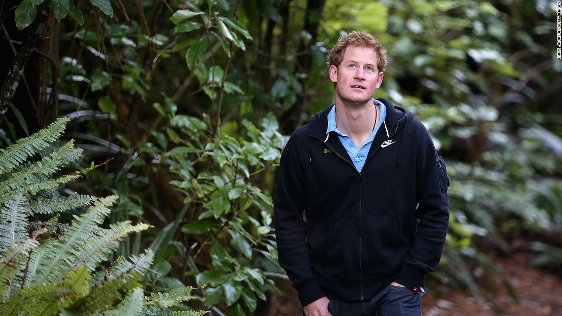 <strong>Ulva Island, New Zealand: </strong>Britain's Prince Harry visited the open wildlife sanctuary of Ulva Island on a trip to New Zealand in 2015. No invasive animals or pests live in these forests and visitors have to follow strict biosecurity standards.