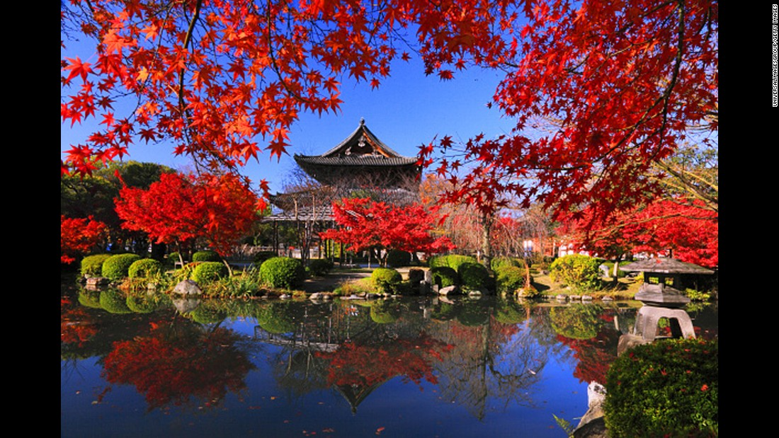 """""""You might think of geishas when you consider Kyoto—and while you can get a taste of geisha culture, there's much more to the city,"""" says Clemence. """"There are more than 1,000 Buddhist temples here (including Toji Temple shown here), plus gorgeous gardens, artisanal shops and refined seasonal food."""""""