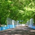 battersea park eprix