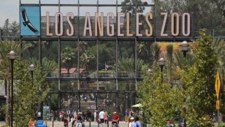 los angeles zoo fake animal facts orig bpb_00000000.jpg