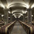 wine trail Bordeaux2