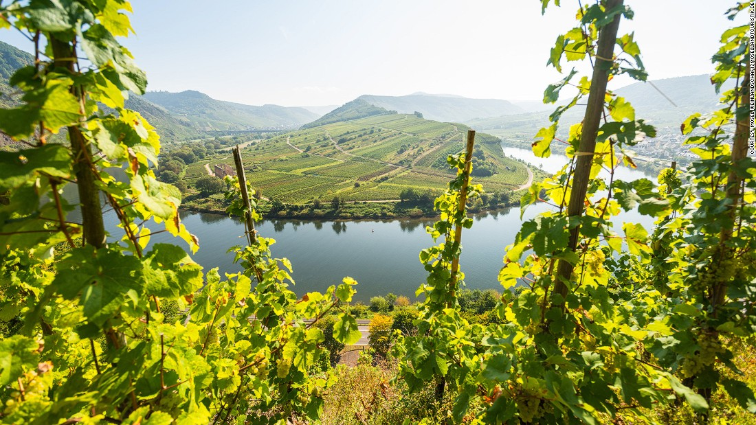 A trip along the scenic Moselle River reveals some of the terraces of the steepest vineyard slopes to be found anywhere.