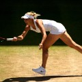 Elena Vesnina  wimbledon semifinals