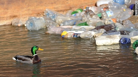 Scientists turn old plastic bottles into fuel