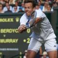 tomas berdych semifinal