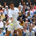 Wimbledon gallery 5