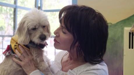 cnnee heroes sherri franklin muttville perros viejos rescatados_00004108
