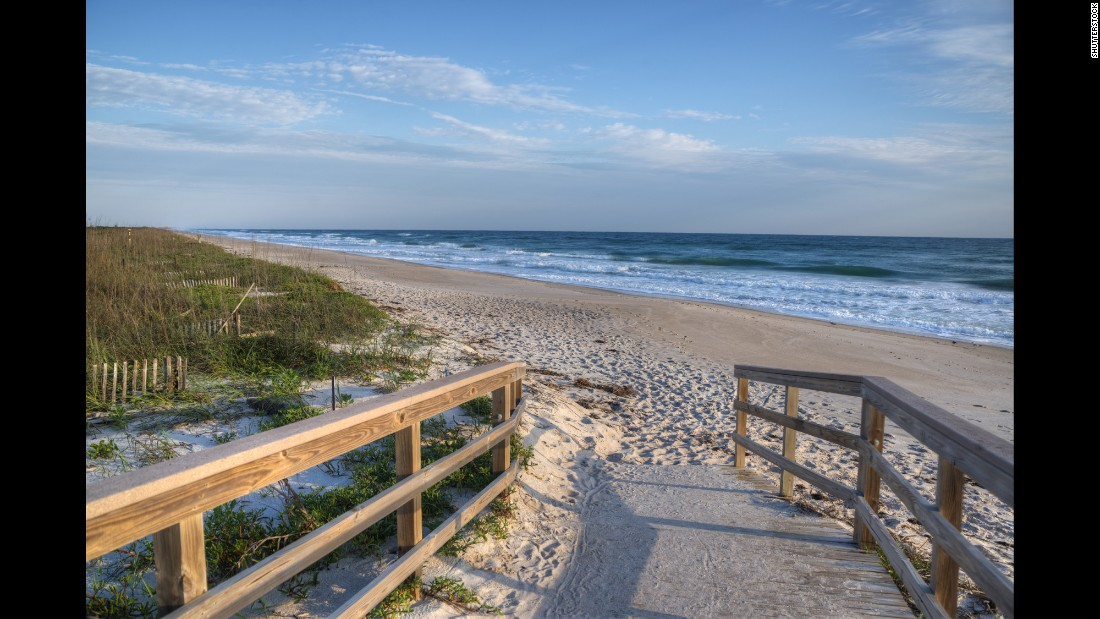 Cape Canaveral National Seashore is  south of New Smyrna Beach. Sea turtles come ashore to lay their eggs on the park's beaches, and National Park Service teams actively work to protect the nests.