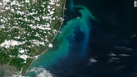 NASA's Aquasatellite captured a picture of the phytoplankton bloom along the South Jersey coast.
