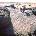 african rock art Niger - Dabous Giraffes