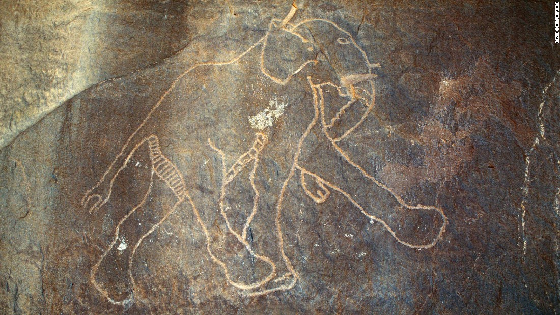 In Libya, cave engravings of elephants show that the giant mammals once called this area of North Africa their home.