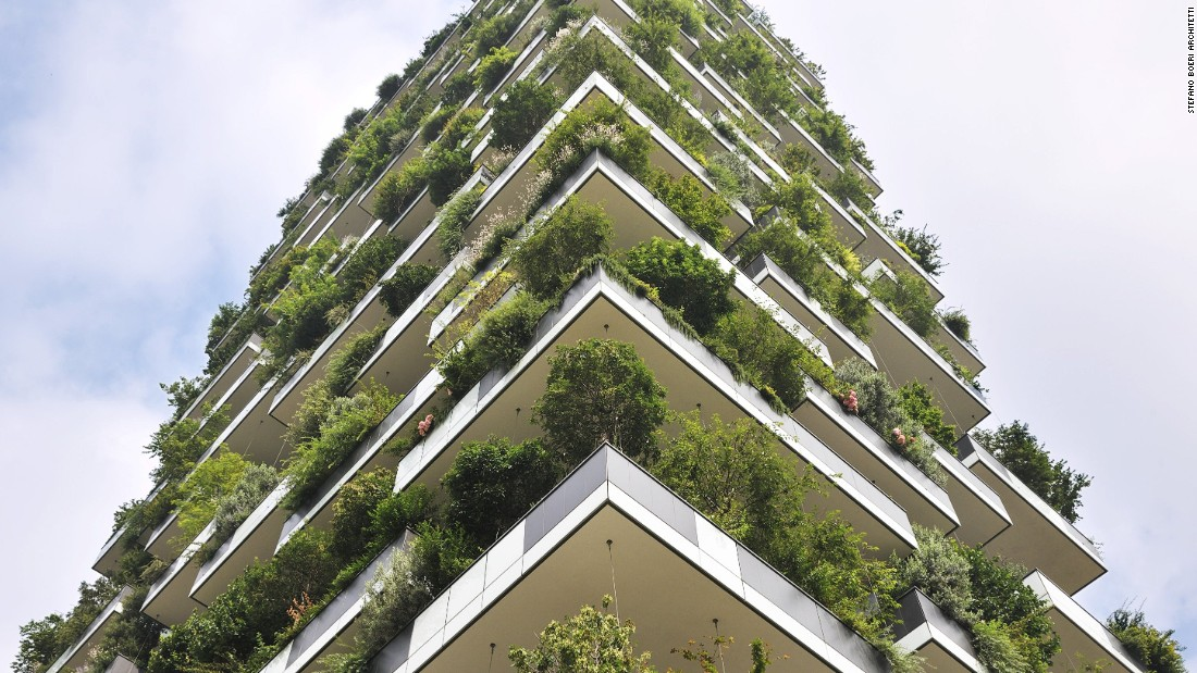 A group of botanists spent two years selecting and arrange plants on the Vertical Forest.