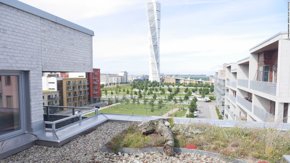 MALMO, SWEDEN: A green roof at the MKB (Malmö municipal housing company) buildings in the Western Harbor district looks out onto the Turning Torso highrise.