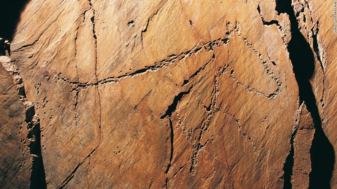 Thousands of ancient carvings -- deer, goats, horses, horned aurochs (ancient cattle) -- dating back 30,000 years were discovered at the joint of Cao Valley and the Douro. It could be mankind's oldest graffiti.