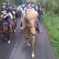 10 man versus horse