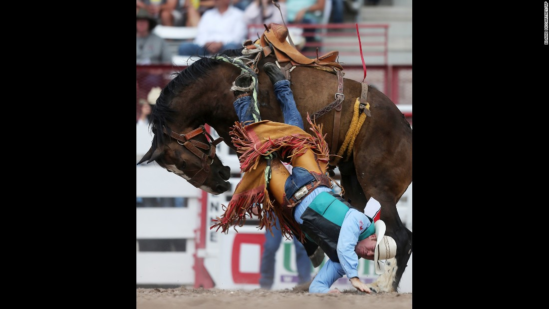 Cody Peterson falls off a bronco during a rodeo in Cheyenne, Wyoming, on Saturday, July 23.