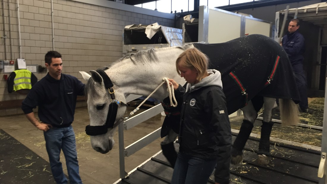 """When we landed ... they unloaded the boxes and transferred the horses to a proper stall on the ground,"" says Alicia Heiniger, head of the luxury lifestyle media company Equestrio."