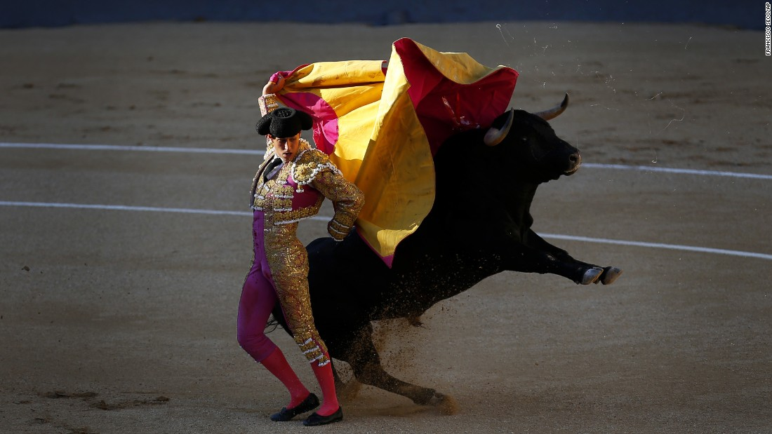 Bullfighter Pablo Belando performs at the Las Ventas bullring in Madrid on Sunday, July 24.