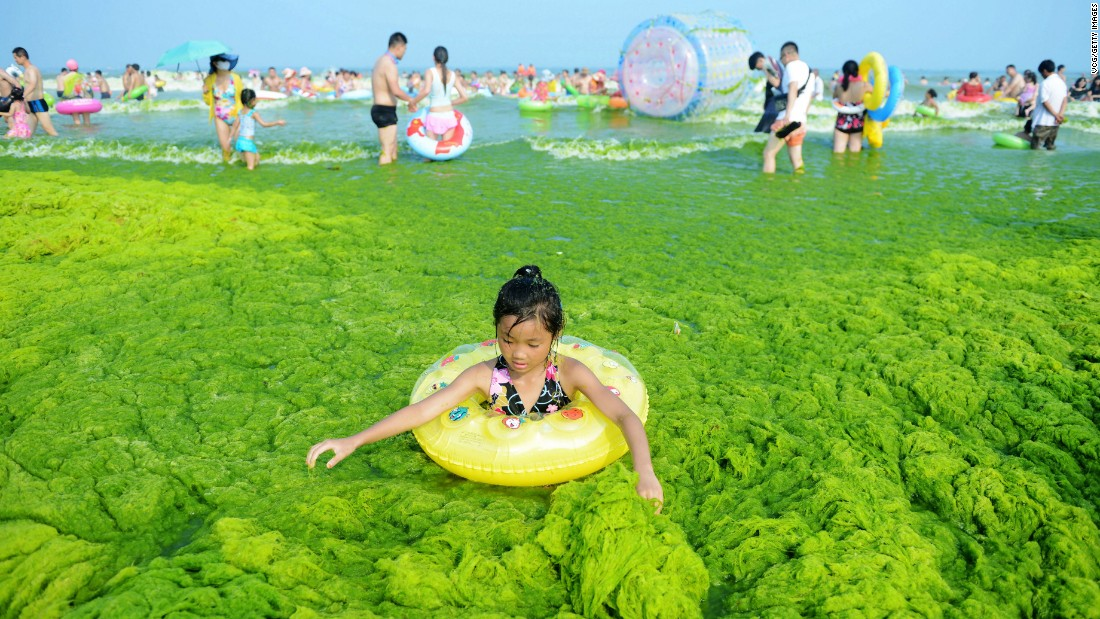 A child plays on seagrass at a beach in Qingdao, China, on Friday, July 22.