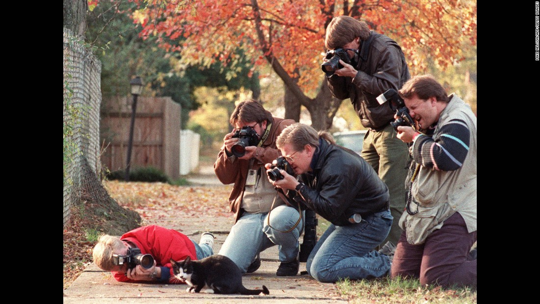 Socks is surrounded by photographers in 1992 -- will Gladstone also be able to handle the spotlight?