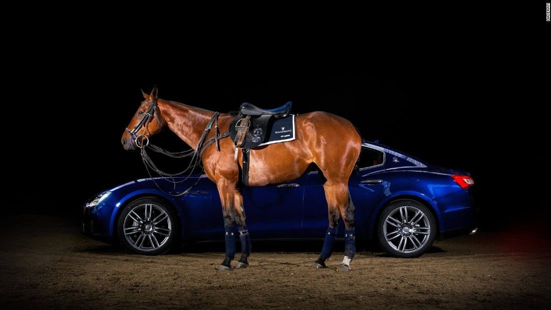 In 2014, Maserati and leading polo brand La Martina collaborated on a one-off, hand-made, luxury polo saddle in celebration of Maserati's Centennial Polo Tour. The blue, black and silver colour scheme was inspired by Maserati's luxurious road cars, including the Ghibli saloon.
