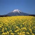 japan mountain day daisen
