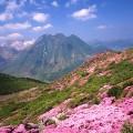 japan mountain day kuju