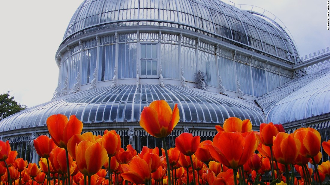 Designed by architect Charles Lanyon and built by ironworker Richard Turner (who would go on to build the Palm House at London's Kew Gardens), it is one of the earliest examples of curvilinear cast iron glasshouses in the world.