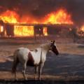 04 clayton fire