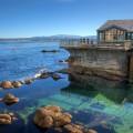 us luxury experiences monterey aquarium