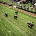 nairobi horse racing