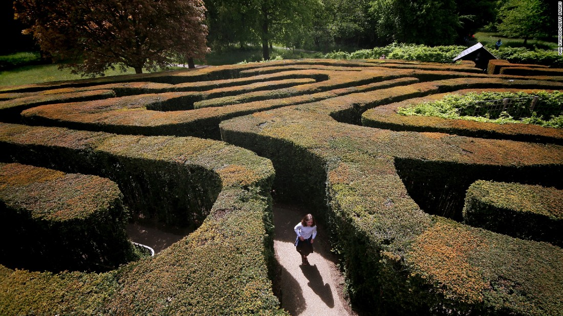 "Once described by English historian Ernest Law as ""the most famous maze in the history of the world,"" the Hampton Court Maze is the UK's oldest surviving hedge maze."