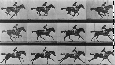 A horse galloping, by Eadweard Muybridge (1830 - 1904).