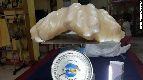 A photo of the monster pearl, showing its weight as about 34 kilograms