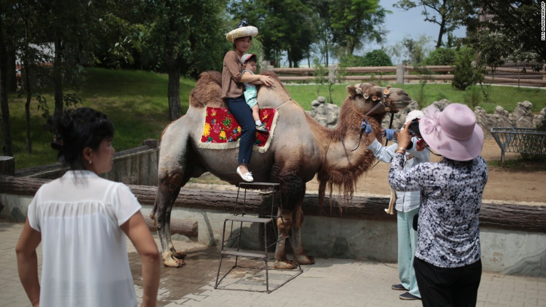 A North Korean and her son pose for a photo on the back of a camel at the newly opened North Korean zoo.