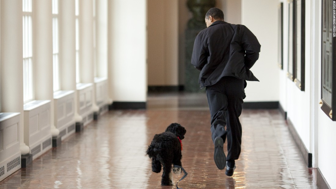 President Barack Obama runs down a White House hallway with the family's Portuguese water dog, Bo, on April 13, 2009. Bo was a gift from Sen. Ted Kennedy and his wife, Victoria, to the President's daughters, Sasha and Malia.