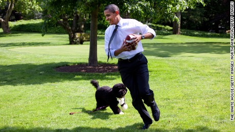President Barack Obama plays football with Bo on the South Lawn of the  White House on May 12, 2009.