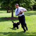 White House dogs 22
