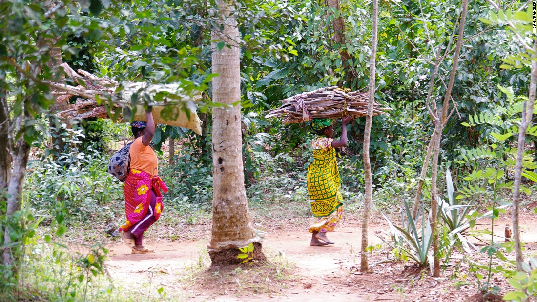 Local women from Dole bring firewood back to their village. Many villagers live on shared property near Hakuna Matata spice farm.