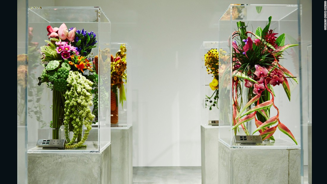 "Azuma has an underground florist shop in Tokyo, called ""Jardin des Fleurs"", that he says is ""like a wine cellar."" The temperature, light and humidity are all carefully controlled to ensure the flowers are shown at their best."