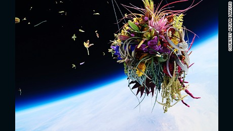 Meet the artist that shot a bouquet of flowers 30,000 meters into space