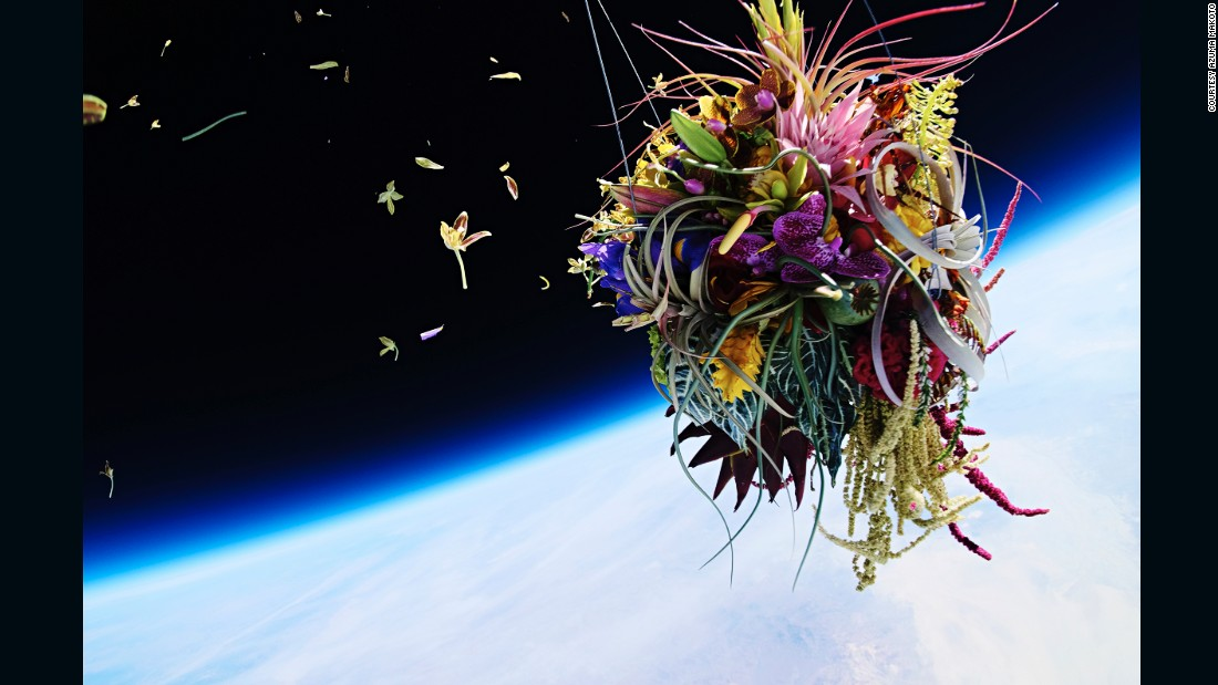 "In Exobiotanica, Azuma sent a pine bonsai and a mother's day bouquet into space and photographed them suspended against the earth. ""Making just an art object was not a goal at all,"" says Azuma. ""I thought I could make more beautiful flower art in the world of minus 60 degree Celsius."""