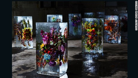 Iced Flowers installation, 2015