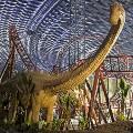 IMG-Wolrds-of-Adventure---Lost-Valley---Dinosaur-Adventure---Predator-Coaster