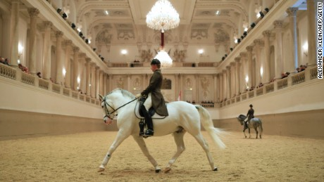 A Lipizzaner stallion and rider practice at the Spanish Riding School of Vienna.